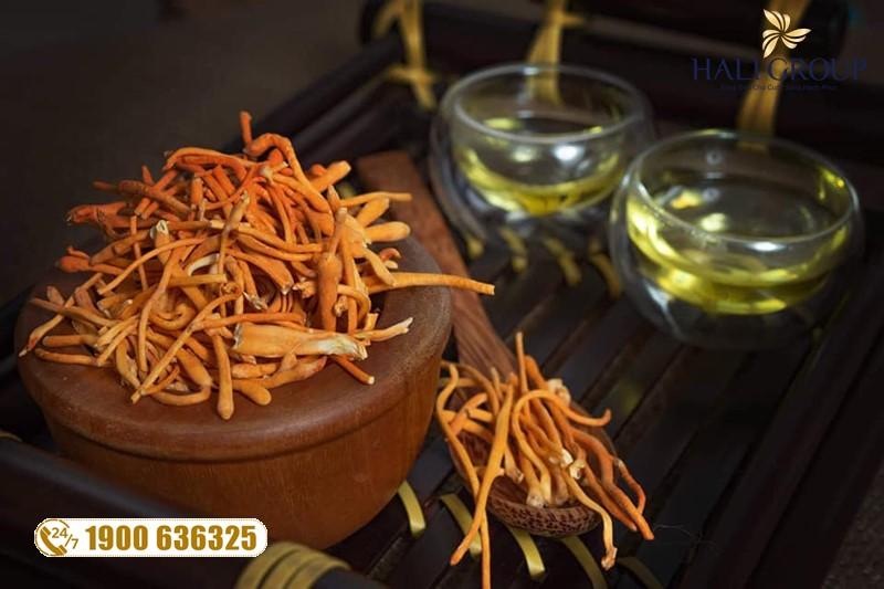 Phân phối đông trùng hạ thảo khô Kim Cương Vàng hộp 10g Tiến Luật
